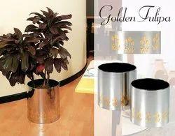 Stainless Steel Golden Tulipa Planter
