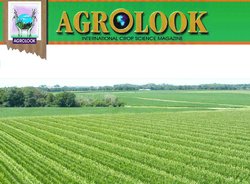 Global Crop Protection Chemical