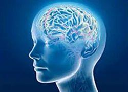 Neuro Surgery Treatment Service