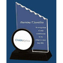 Contribution Acrylic Trophy