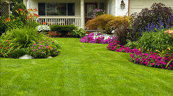 Park Landscaping Services
