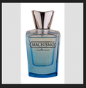 Birra Fragrance Machismo Intense 7047, Packaging Type: Bottle