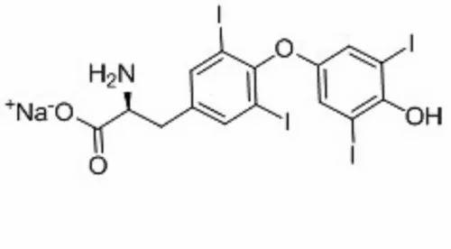 Levothyroxine Sodium Levothyroxine Tablets In S R Nagar