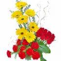 Bright N Beautiful Flowers