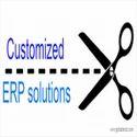 ERP/ Customized ERP