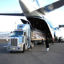Commercial Air Freight Forward Service