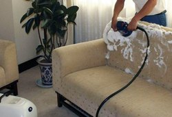 Sofa Shampoo Cleaning Services