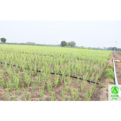 Spray rain gun kit at rs 2340 kit irrigation devices sinchaai ke spray rain gun kit solutioingenieria Gallery