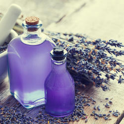 Lavender Sandal Soap Fragrance