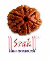 6 Mukhi Rudraksh Beads