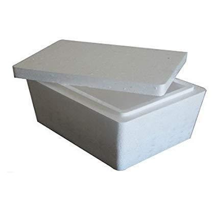 Thermocol Pharma Box