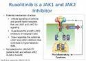 Ruxolitinib Inhibitor