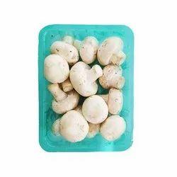 Daily Fresh Mushroom
