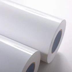 Cast Coated Paper for Packaging, Bottle Label and Gumming Sheet