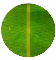 Real Banana Leaf Design BOPP 8 Micron Jindal