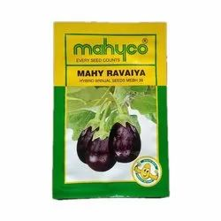 Mahyoo MEBH39 Hybrid Brinjal Seeds, For Agriculture, Pack Size: 10g