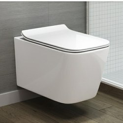 White Wall Hung Toilets