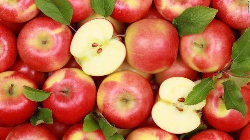Rose Apple Fruit Online