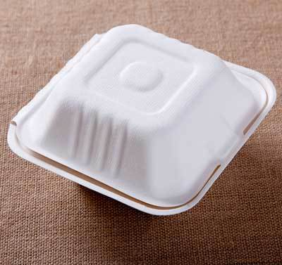 Bagasse Burger Container