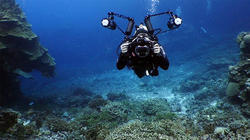 Underwater Videography & Photography