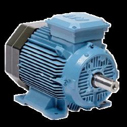 Flameproof Motor