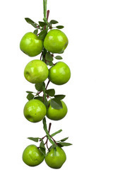 Plastic Green Artificial Fruit