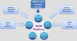 Master Data Management(MDM) Solutions