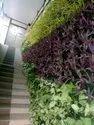 Natural Vertical Gardening Services