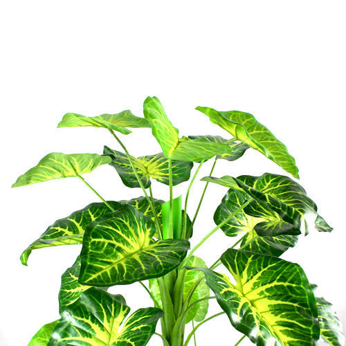 artificial anthurium leaves plant at rs 750 /piece | artificial