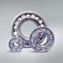 Bearings for Sanitary Environments