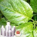 Capsicum Oleoresin 2.5 Percent Capsaicin