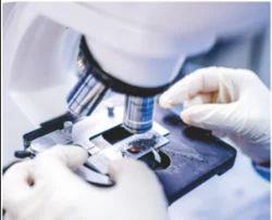 Clinical Pathology Diagnostics Services