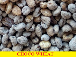 Roasti Choco Wheat, High In Protein, No Artificial Flavour, No Preservatives