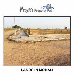 Lands in Mohali