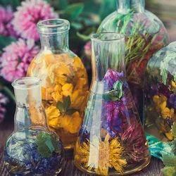 Flowering Herbs Fragrance