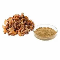Gymnema Extract Upto 75% Gymnemic Acid