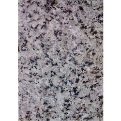 Granite Stone P White Granite Slab, Thickness: 15-20 mm