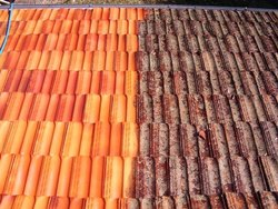 Terracotta Roof Tile Cleaning Service