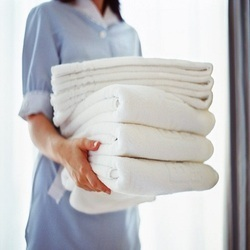 Dry Cleaner & Laundry Services