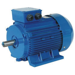 Impak Caca High Voltage AC Induction Motor