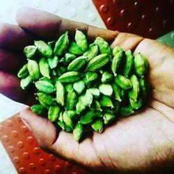 Cardamom in Bodinayakkanur, Tamil Nadu | Cardamom Price in