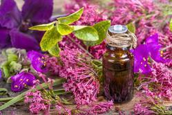 Pure Natural Clary Sage Oil