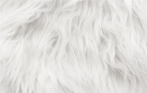 Long Fur Fabric For Industrial Rs 370 Meter Seth
