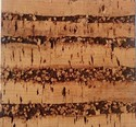 Cork Wall Tiles Grain