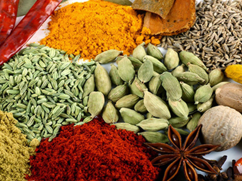 Fresh Spices Wholesale Sellers from Navi Mumbai