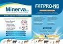By Pass Fat, Protein,Natural Buffer With Enzymes & Sc Yeast Product