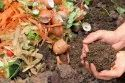 Organic waste composting solution
