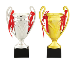 Sports Cup Trophy