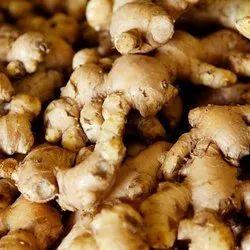 Natural Ginger, Packaging Size: 5 Kg