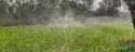 Rain Pipe - 100 meter